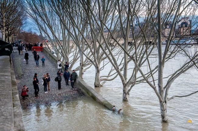 Au pied du pont Neuf les accès aux berges sont sous l'eau