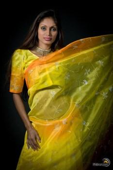 Le beau sari