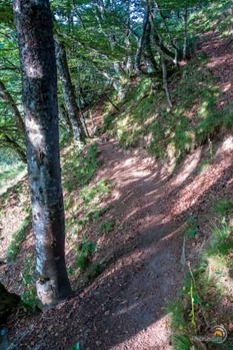 Le sentier se rétrécie à l'approche de la vallée de Chaudefour