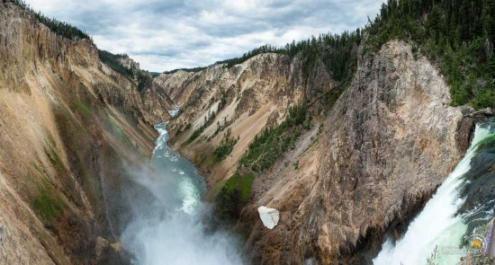 La chute d'eau du Canyon de Yellowstone