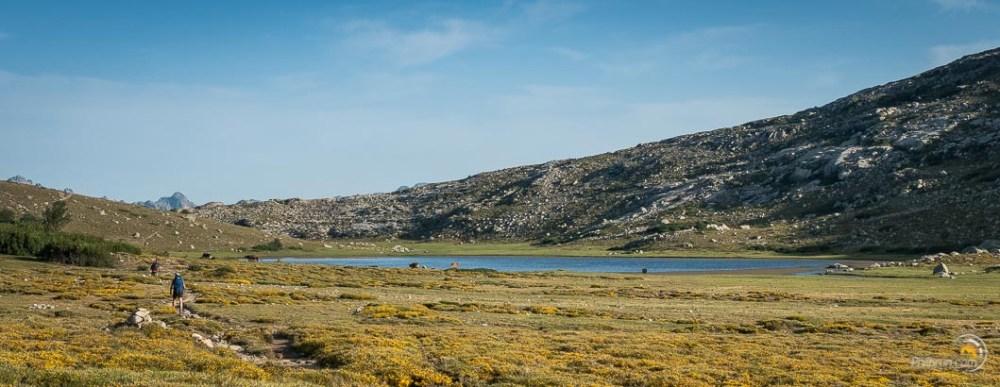 Le lac Nino et ses fidèles chevaux sauvages