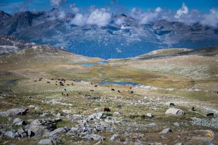 Lac de pozzine d'armina