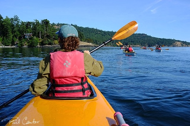 kayaking-san-juan-islands-washington