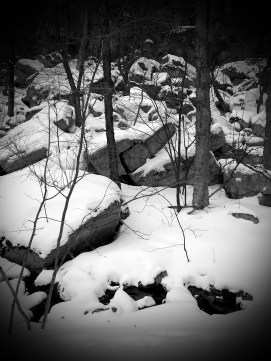 Mohonk snow on trail 2015