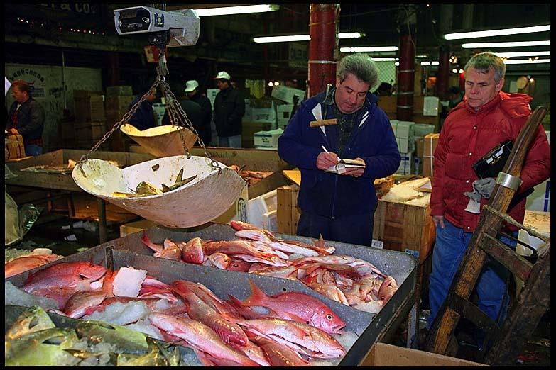 White sails fish market seafood market icon. Fulton Fish Market