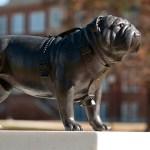 Statue of a bulldog
