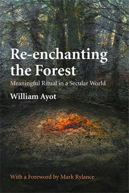 Re-enchanting the Forest