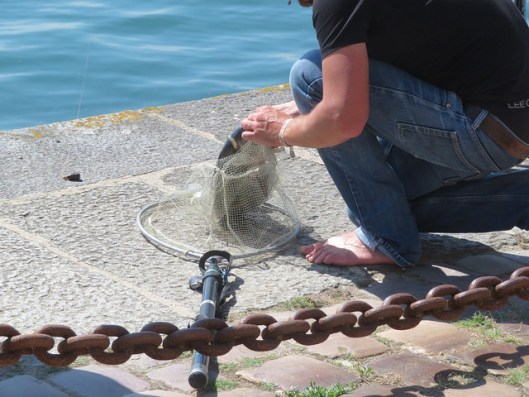 guy caught a fish at high tide in the harbor