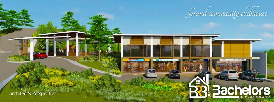 Philip esarza updated real estate properties in cebu 2017 for Casa moderna naga city prices