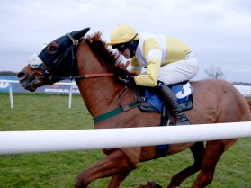 hail the brave gallop