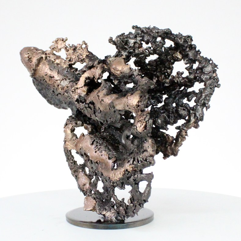 Buffon poisson Sculpture Bronze acier buffon fish steel philippe Buil