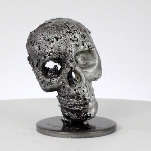 Crane Vanité - Sculpture tete de mort acier aluminium - Vanite art - Skull artwork steel aluminium - Buil