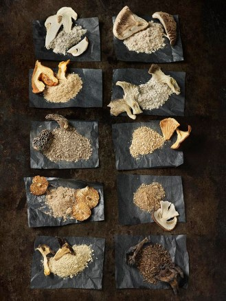 20-champignons-seches