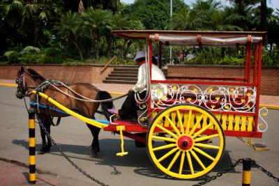 horse carriage in manila