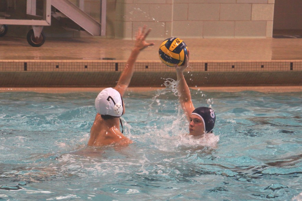 Boys Water Polo Struggle in Absence of Seniors