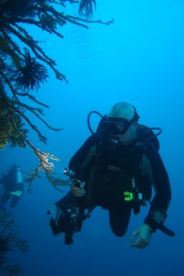 Phil looking for small critters, Cabilao, Philippines