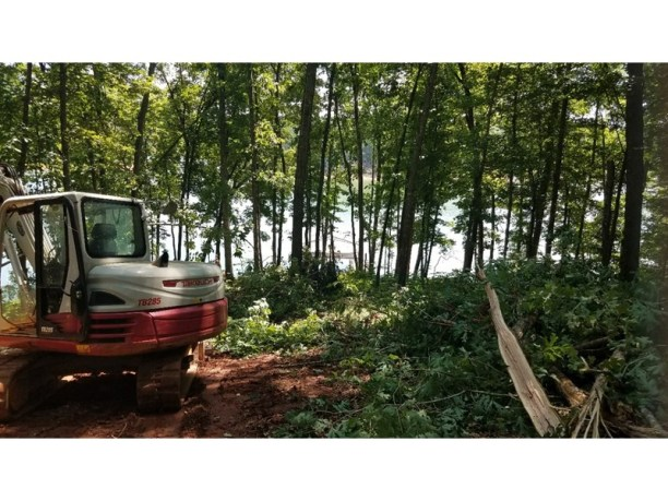 Clearing the underbrush and trees from the lot.