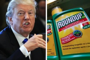 Donald Trump Round-Up