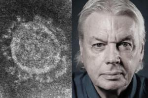 David Icke and coronavirus