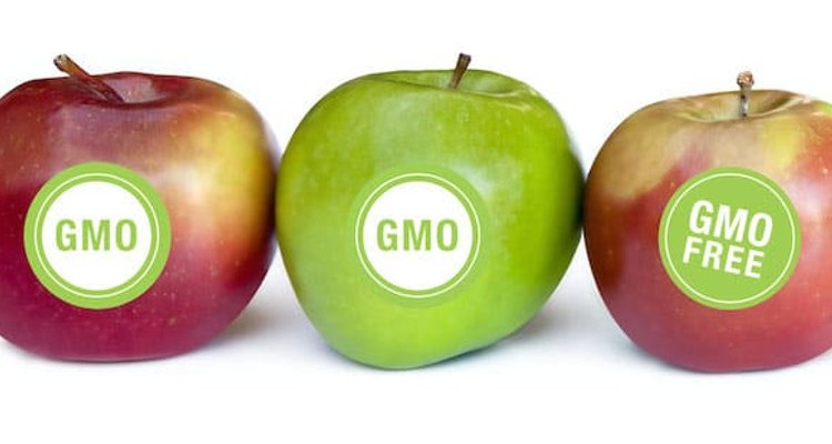 Apples labeled GMO