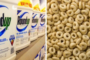 Round Up herbicide and cheerios