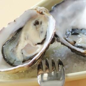 Seafood Celebration at Conshohocken's Gypsy Saloon & Southern Cross Kitchen