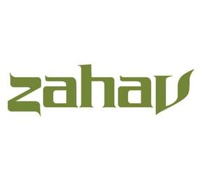Zahav Review: Lamb Shack