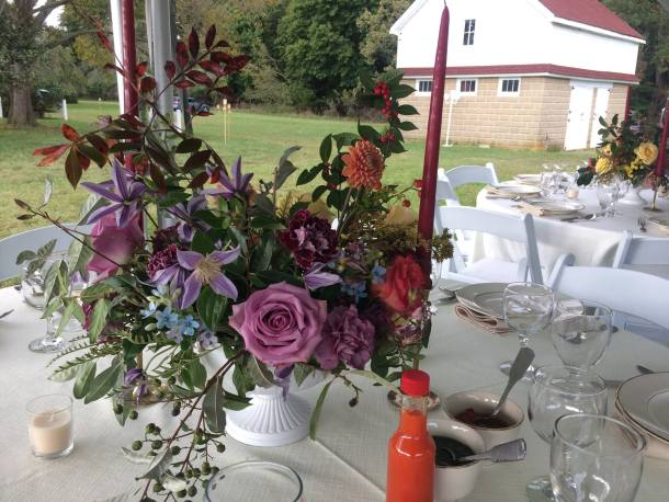 Savoie Organic Farm Dinner with Chef Shola Olunloyo