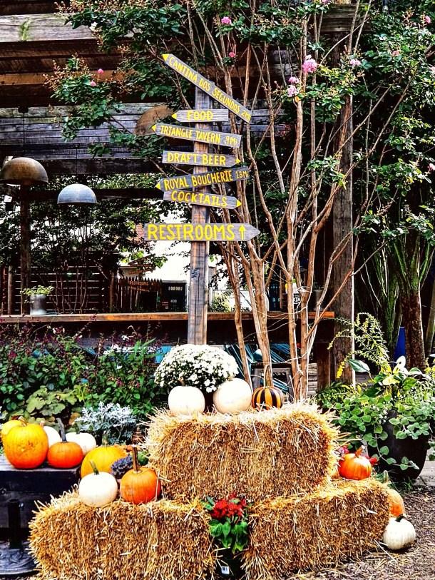 Fall at PHS Pop Up Garden South Street