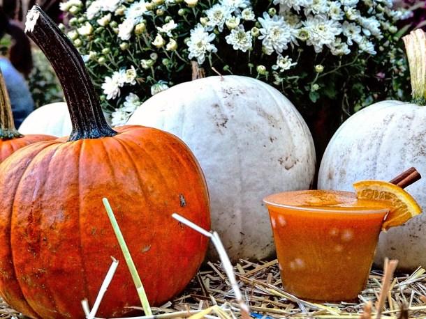 Pumpkin Margarita at PHS Pop Up Garden South Street
