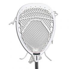 Shipley to host Greg Cattrano's annual Co-Ed Lacrosse