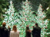 Who Creates Longwood Gardens Christmas Spectacular?