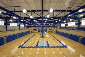 court-blue