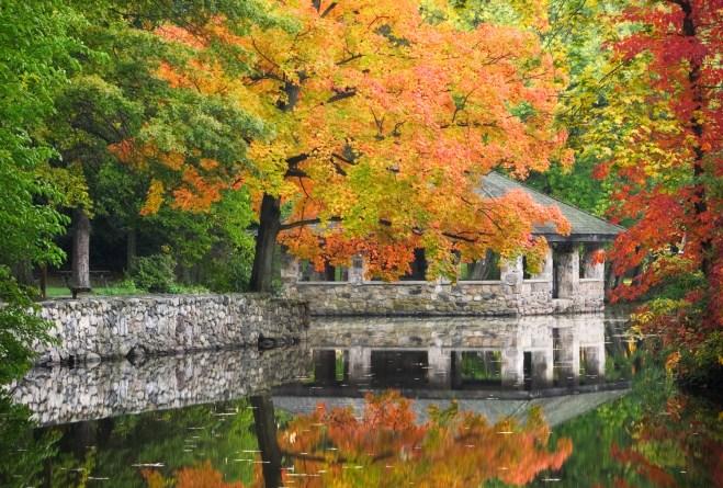 Tilley Pond Park