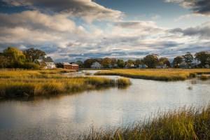 Salt Marsh, Norwalk