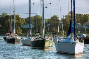 moored sailboats at pequot yacht club