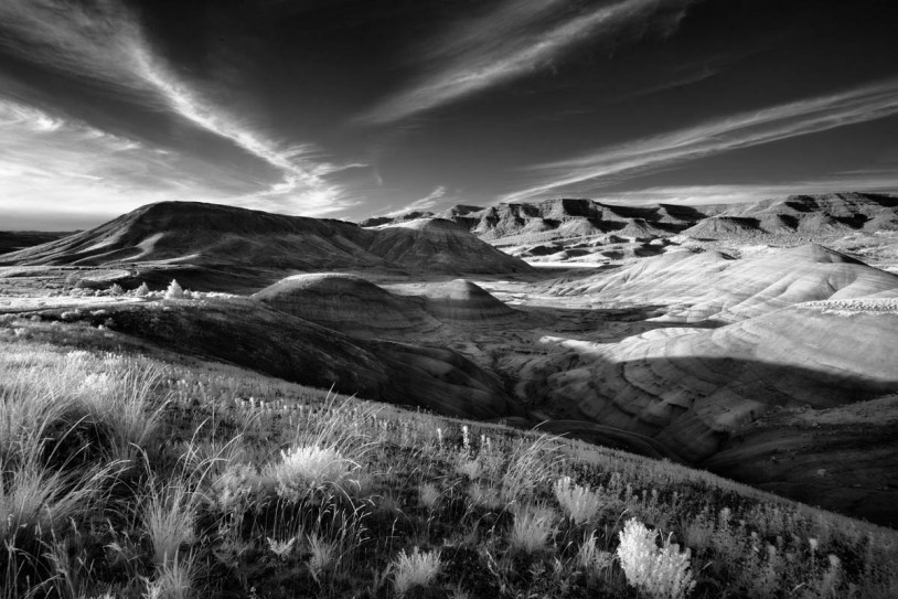 Painted Hills - 17-257