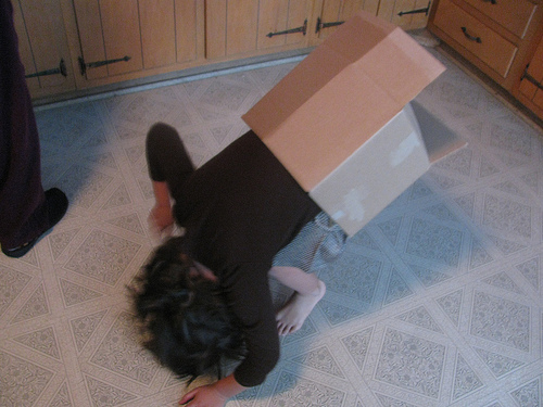 Boxes can be fun for playing, but don't get stuck in one, physically or mentally.