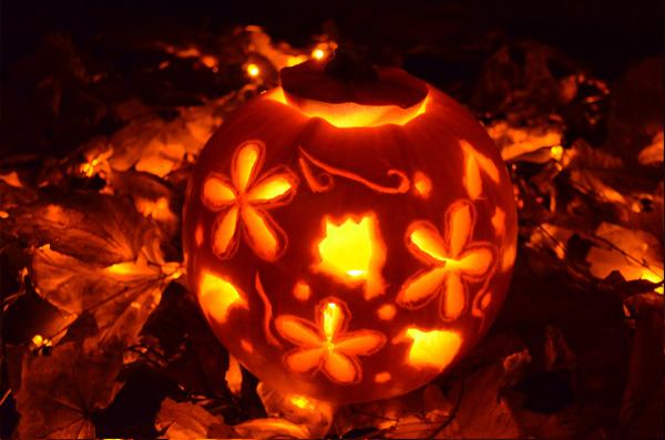luckypig-halloween-pumpking-autumn