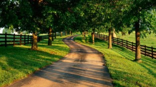 Summer-Country-Road-575x323
