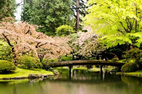 Nitobe-Memorial-Garden-1024x682