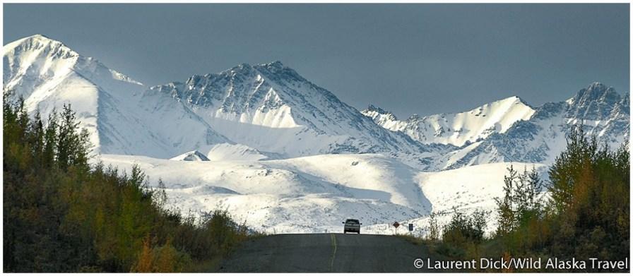 Alaska-Highway-c-Laurent-Dick-Wild-Alaska-Travel(pp_w1060_h463)