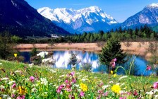 spring-in-the-mountains-spring-31493838-1280-800