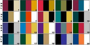 %name sports tems colors
