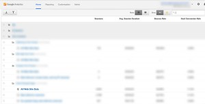 Google Analytics All Web Site Data View