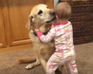 Kids And Dogs Youtube