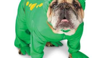 Big Dog Frog Costume