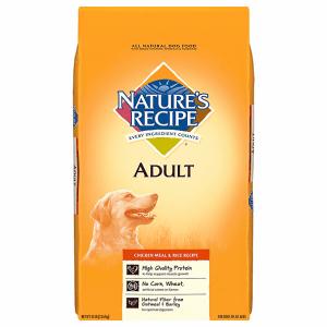 Natures Recipe Affordable Budget Dog Food