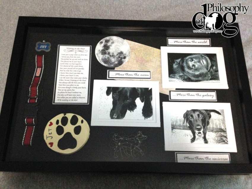 Senior Dog Memorial Shadowbox
