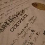 cav authentication verification